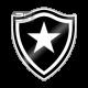 Prediksi Skor Botafogo RJ vs Vasco da Gama 22 Juni 2017
