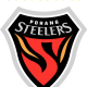 Prediksi Skor Pohang Steelers vs Jeonbuk Motors 28 Juni 2017